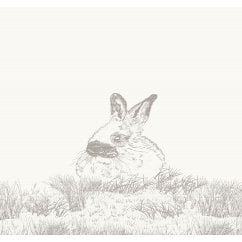 Orion hase rabbit sketchwork blanket, 150x200cm